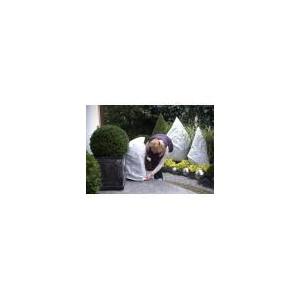 40x55cm Kaptur ochronny na rośliny POLSKI