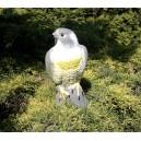 Jastrząb ozdoba odstraszacz ptaków